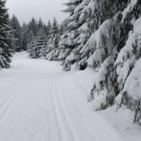 Obidowa Śladami Olimpijczyków - Trasa Narciarska na Turbacz